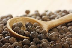Black pepper. Aromatic pepper in wooden spoon royalty free stock photo