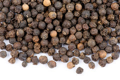Black pepper Stock Image