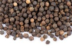 Black pepper Stock Image
