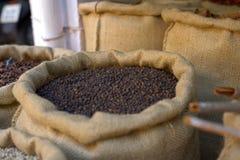 Black pepper Royalty Free Stock Image