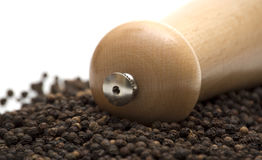 Black pepper Royalty Free Stock Images