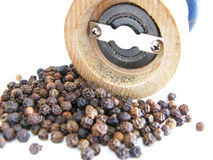 Black pepper Royalty Free Stock Photos