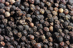 Black pepper Stock Photos