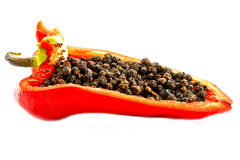 Black Pepper And Red Stock Image