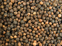 Black pepper background. Background from black organic  pepper grains Royalty Free Stock Photos