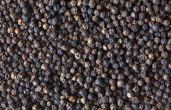 Black Pepper Background Stock Images