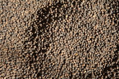 Black pepper background Royalty Free Stock Photography