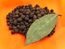Black pepper and bay leaf Royalty Free Stock Images