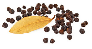 Black pepper and bay leaf Stock Image