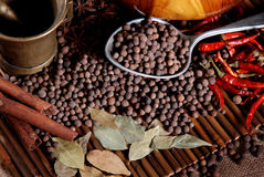 Black pepper and  bay leaf Stock Images