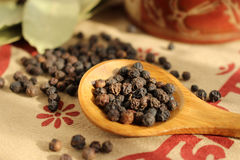 Black pepper and bay leaf Royalty Free Stock Photo