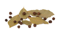 Black pepper and bay leaves. On white background Stock Photo