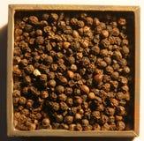 Black pepper beans Royalty Free Stock Photo