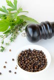 Black pepper in a bowl and herbs Stock Photography