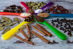 Black pepper, cardamom, coriander, mustard seeds, bay leaf, cinnamon, anise in the colorful Royalty Free Stock Photos