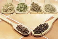 Black pepper and cloves in wooden spoons. Dried herbs behind Stock Photography