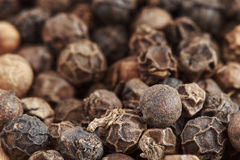 Black pepper corns Royalty Free Stock Images