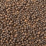 Black pepper grains Royalty Free Stock Photos