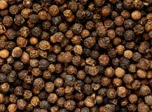 Black pepper grains as background close up Stock Image