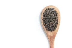 Black pepper grains into a spoon Stock Images