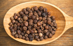 Black pepper grains in spoon Stock Image
