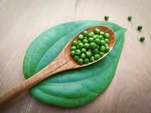 Black Pepper green pepper seed Stock Photo
