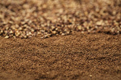 Black pepper ground and powder, Royalty Free Stock Photo