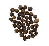 Black Pepper Group Isolation. Black pepper group plus isolation royalty free stock photo