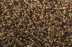 Black Pepper Macro Stock Photos