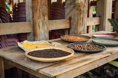 Black pepper and other spices drying in the sun Royalty Free Stock Image