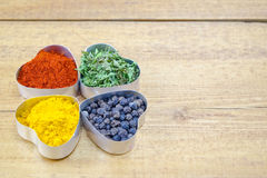 Black pepper, paprika, curry and basil Stock Image