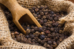 Black pepper peas in a sack and scoop Stock Photo