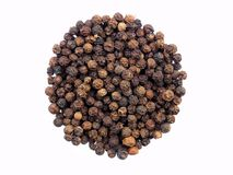Black pepper Piper nigrum close up isolated on white background. Indian spice seasoning Royalty Free Stock Photo