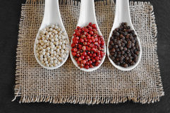 Black pepper, Piper nigrum. White pepper. Pink pepper. Royalty Free Stock Photography