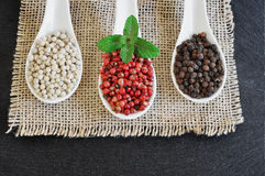 Black pepper, Piper nigrum. White pepper. Pink pepper. Royalty Free Stock Images