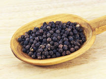 Black pepper seed on spoon Royalty Free Stock Photography