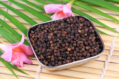 Black pepper seeds. In bowl with beautiful background Stock Photos