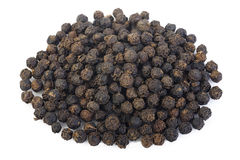 Black pepper seeds Royalty Free Stock Image