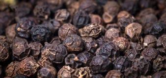 Black pepper. Stock Image
