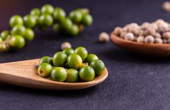 Black pepper spice peppercorn on wooden spoon and dark rustic background royalty free stock images