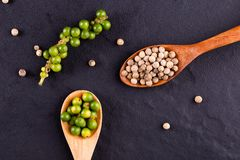 Black pepper spice peppercorn on wooden spoon and dark rustic background royalty free stock photos