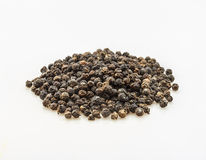 The black pepper spices on white background. Royalty Free Stock Photos