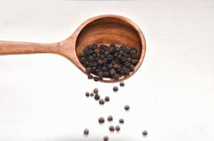 Black pepper spices in wooden spoon Stock Photography