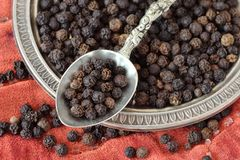 Black pepper on spoon and plate. Macro Stock Images