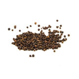 Black pepper was placed on a white background.  stock images