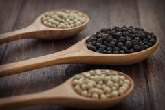 Black pepper and white pepper on wooden spoon stock image