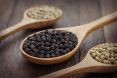 Black pepper and white pepper on wooden spoon royalty free stock photos
