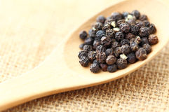 Pepper in wooden spoon. Black pepper in wooden spoon Stock Photography