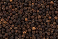Black pepper zoomed in on Royalty Free Stock Photography