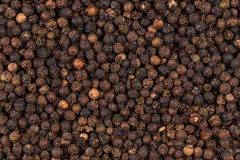 Black pepper zoomed in on Stock Image